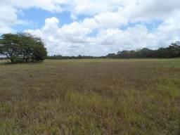 Área no Mendes em São José de Mipibu