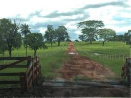 Vendo Fazenda em Jales - São Paulo