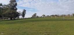 Chácara à venda com 2 dormitórios em Zona rural, Dilermando de aguiar cod:10042