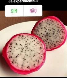 """Pitaya """"fruta"""" quilo ou unidade, polpa branca ou vermel"""