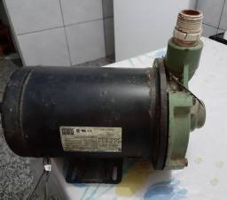 Bomba d'água 3CV