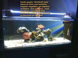 Vendo aquário marinho somente o aquário $350 120x35x45 samp lateral