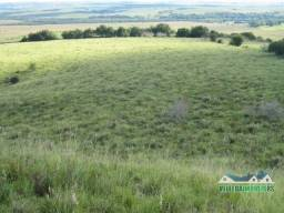Velleda oferece fazenda com 236 hectares santana do livramento