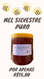 Mel Puro Silvestre