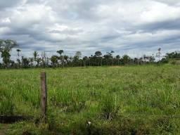 Chácara no Flor do Amazonas
