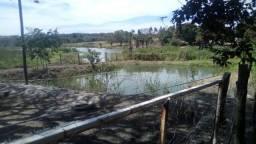 Chácara de lazer apenas 40km de Goiânia rica em água