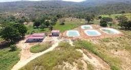 Fazenda recém formada em Buritis MG