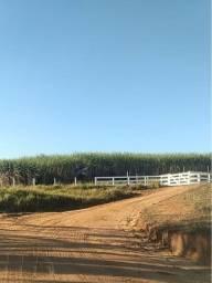 Fazenda 57 alqueires em pitangueira 11.000.000