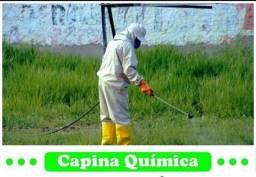 Controle de peste ( insetos em geral cupim e roedores)