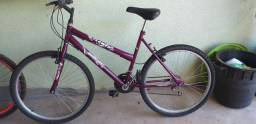 Bicicleta adulto feminina