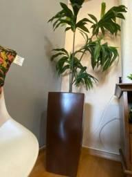 Planta + vaso decorativo