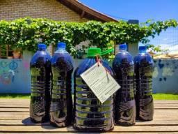 Adubo líquido - biofertilizante