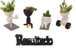 Robert plant cactos suculenta decoração estante banheiro quarto casa