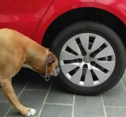 Proteção para pneu e roda contra xixi de cachorro sob medida
