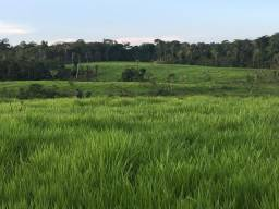 Fazenda com 1.470 hectares R$ 950.000