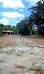 Vendo Sítio de 15 hectares na Cacimba Velha
