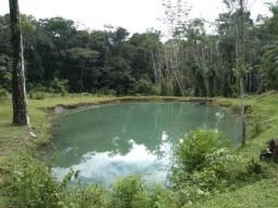 25 hectares a 55 km de Belém lindo Sitio por 200 mil reais Aceito carro na negociação