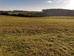 Velleda oferece fazenda 550 hectares, Viamão, plantio, pecuária, 8 km RS040