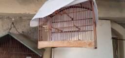 Gaiola de passarinho novinha com capa