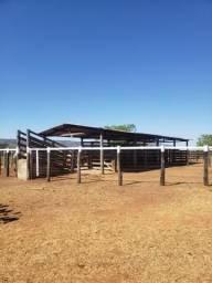 Fazenda totalmente plana em Buritis MG