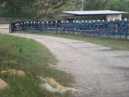 Fazenda de 118 alqueires em Casimiro de Abreu, RJ