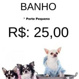 PetShop - Banho a partir de R$ 25,00