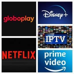 Netflix Globoplay Disney e Amazon Prime