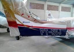 Sou pintor de avião