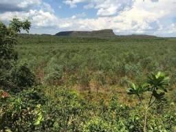 Vendo Fazenda Em Juscimeira MT 130,Entre Rondonópolis e Primavera
