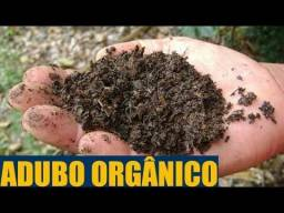 Adubo orgânico