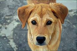 Pinturas Personalizadas Animais de estimação