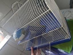 Vendo Gaiolas de Hamester/Ratinhos