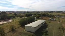 Galpão de 550 m², autorizado a armazenar cargas perigosas, em P. Prudente- SP