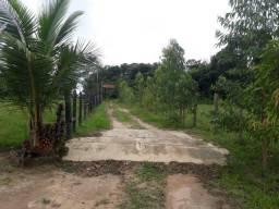 24 hectares em bujaru por 200 mil toda pronta zap 988697836