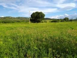 Negocio uma excelente Fazenda a 6 minutos de Parelhas-RN, muita terra de vargem e água!