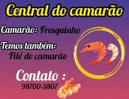 Camarão é  file de camarão