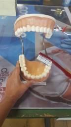 Modelo de escovação dentes