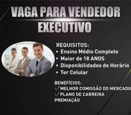Vendedor (a)Executivo