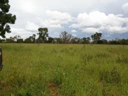 Arrendo 02 Fazendas Para Pecuária