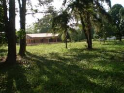 Fazenda em Benevides, na Pista, Br. 316 Km. 21