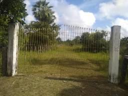 Propriedade em José de Freitas próx. perímetro Urbano com 11 hectares