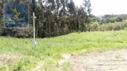 CH0314 Mandirituba 4.200 m² de área p/ Chácara  com tanque luz  300 m asfalto