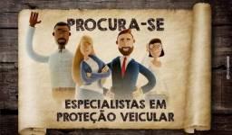 Vendedor/consultores de proteção veicular