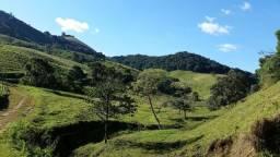 Título do anúncio: Fazenda em Maria da Fé propícia para oliveiras