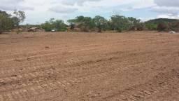Terreno com projeto para loteamento com 1000m²