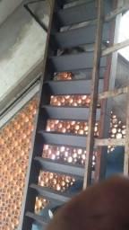 Escada 4.500 metros nova ZAP * ou chama Cel *