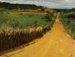 Zona rural - área grande - acima de 8 mil hectares - canto do buriti/piauí