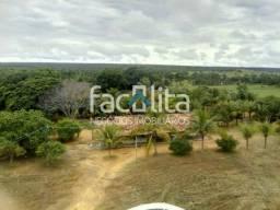 Fazenda No Município de Pindorama - cód. 226