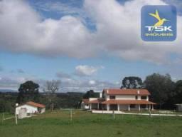 CH0181 São José dos Pinhais  Chácara  4 Alq. plana 950 m² construído 33 km Ctba