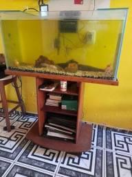 Estante  aquário.